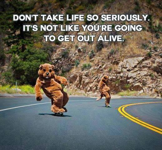 Be more Beaver